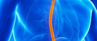 Воспаление пищевода: симптомы, причины и лечение