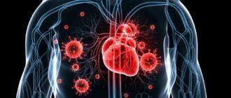 Инфекционный эндокардит: причины, проявления, диагностика и лечение